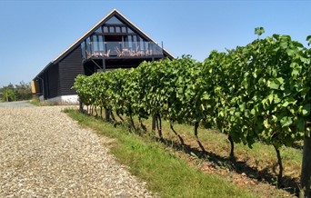 Clayhill Vineyard Group Visits