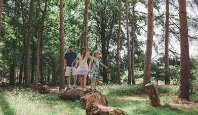 The Fairhurst Family enjoying The Wild Wood at Marks Hall Estate © Marks Hall Estate